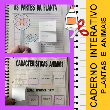Caderno Interativo - Plantas e Animais