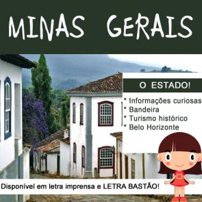 Minas Gerais - o estado