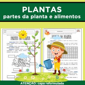 Plantas - partes da planta e plantas como alimento