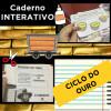 Caderno Interativo - CICLO DO OURO no BRASIL