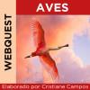 Webquest - Aves