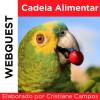 Webquest - Cadeia Alimentar