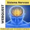 Webquest - SISTEMA NERVOSO
