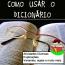 Como usar o dicionário