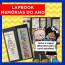 Lapbook MEMÓRIAS DO ANO