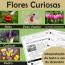 Flores Curiosas